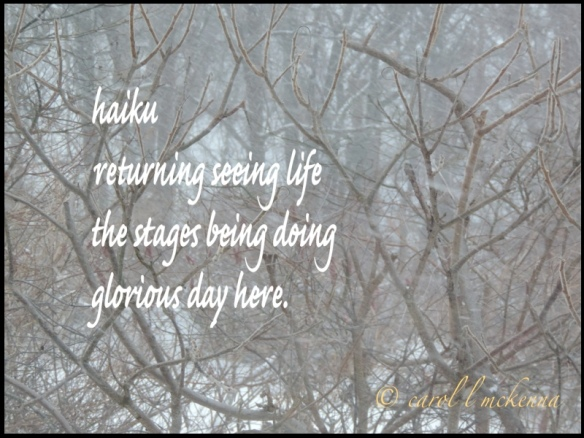 I read recently that haiku is like a prayer ~ I certainly find it meditating ~ what do you think?